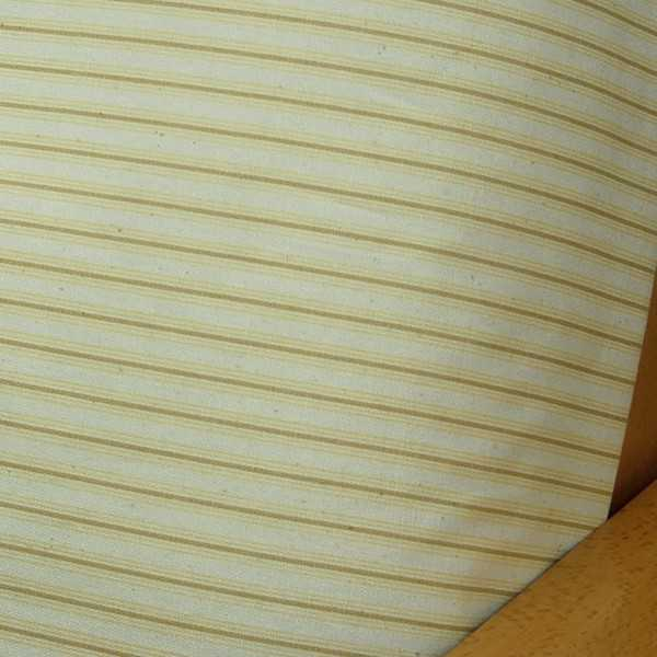 Cottage Stripe Sunny Arm Cover Protectors 305